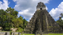 Tikal - Aspiring Capital of the Maya World